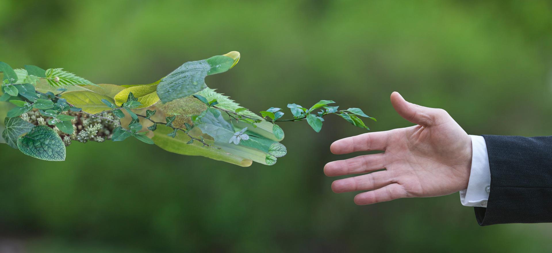 Guida Ecobonus serramenti 2019